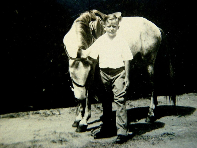 Dan and Horse