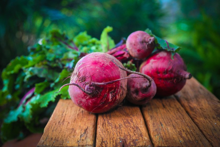 Red Beet2